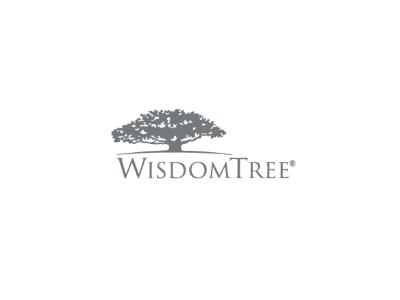 WisdomTree ETF etfs
